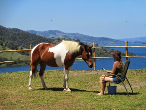 Equestrian+Retreats+in+Costa+Rica.png