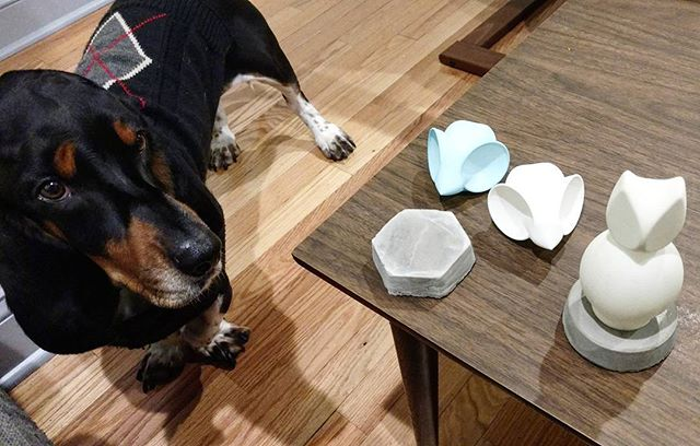 Rhombus, the world's cutest design assistant.  #wip #prototype #lighting #design #nightlight  #lamp #cad #3dprinting #homedecor #homegoods  #mouse #owl #bassethound #hounddog