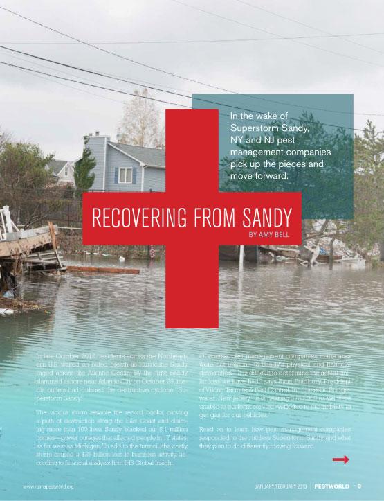 Copywriter-Hurricane-Sandy-PestWorld-Magazine1-WritePunch.jpg