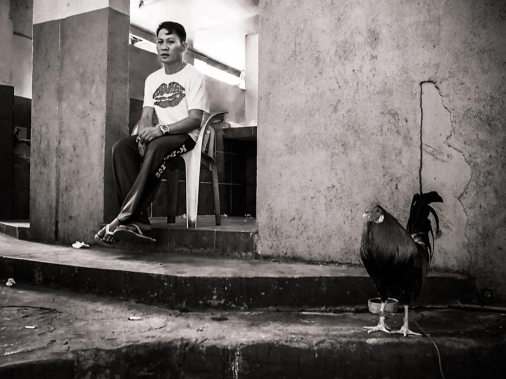 Sabong_By Hakim Boulouiz1.JPG