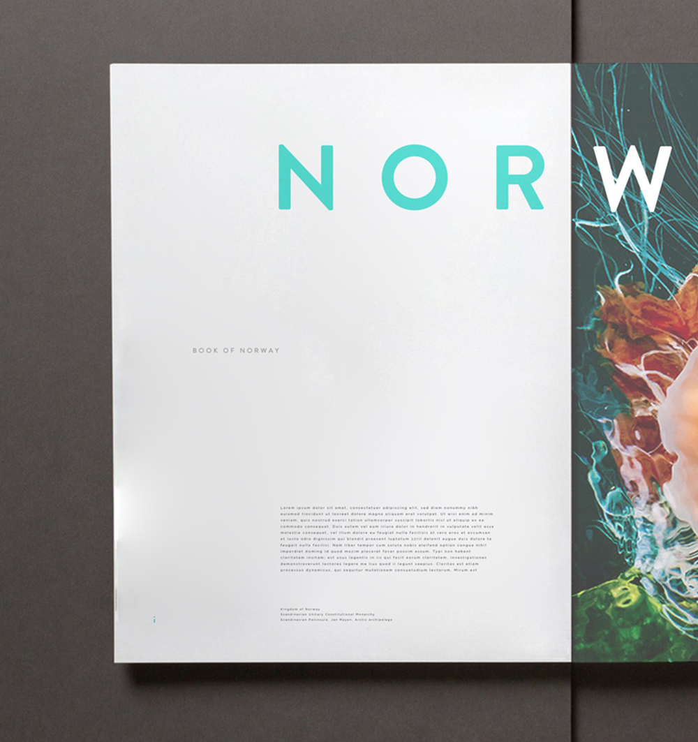 Norway Editorial Print - 2013