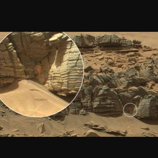 Been looking through all the photos captured by the Mars rover.. 👀 so many bizarre images… #Mars #marsrover