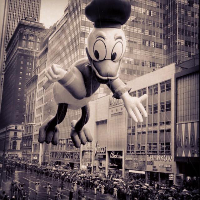 First love, Donald Duck #firstlove