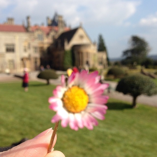 I keep trying to focus on what's in front of me, but my heart is still attached to all I've left behind #England (at Tyntesfield)