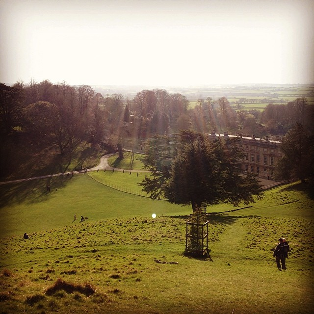 Climbed a hill to bask in the sunlight (at dyrham )