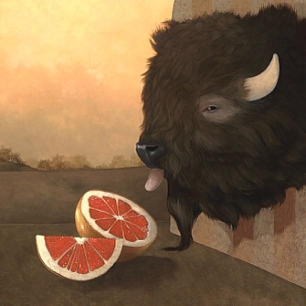 Freedom Fighter #detail #myfavoriteanimalintheanimalkingdom #buffalo #lolafineart #coreyhelfordgallery