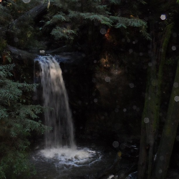 One more pic, because the big basin redwood forest has a beautiful waterfall. This camera picked up some lovely mist from the fall, no filter #forest #redwoods