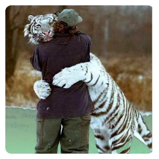 I love a big hug (Taken with instagram)