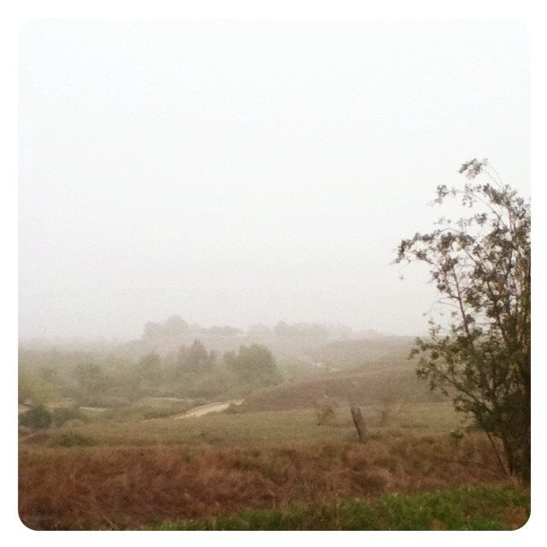 Spends morning bike ride in a daydream (Taken with Instagram at Santa ana River Trail)