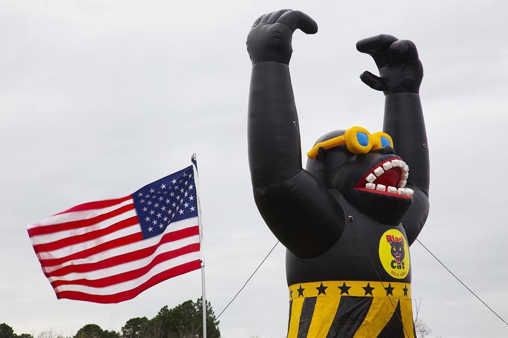 Flag and Gorilla