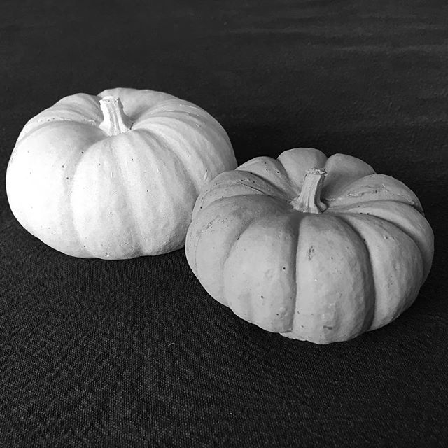 Concrete pumpkins 🎃 These will be for sale later this week.  #concretedesign #concretedecor #concretecountertops #concretepumpkin #concretepumpkins #concretefurniture #sandiegomade #madeinsandiego #makersgonnamake #makersmovement