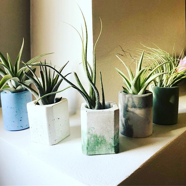 We've got a ton of these airplant holders ready to hold your airplants! Plus some regular old non airplant planters and other fun stuff today at the @self.made.california market.12-5 @quartyardsd #makersmovement #quartyardsd #sandiegomade #concretedecor #madeinsandiego #selfmadecalifornia #concretedesign #concretecolor #concretefurniture #buddyrhodesproducts #concretelife #concreteplanter #succulents #succulove