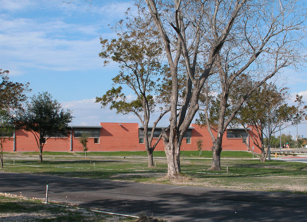 oak park - south trees.jpg