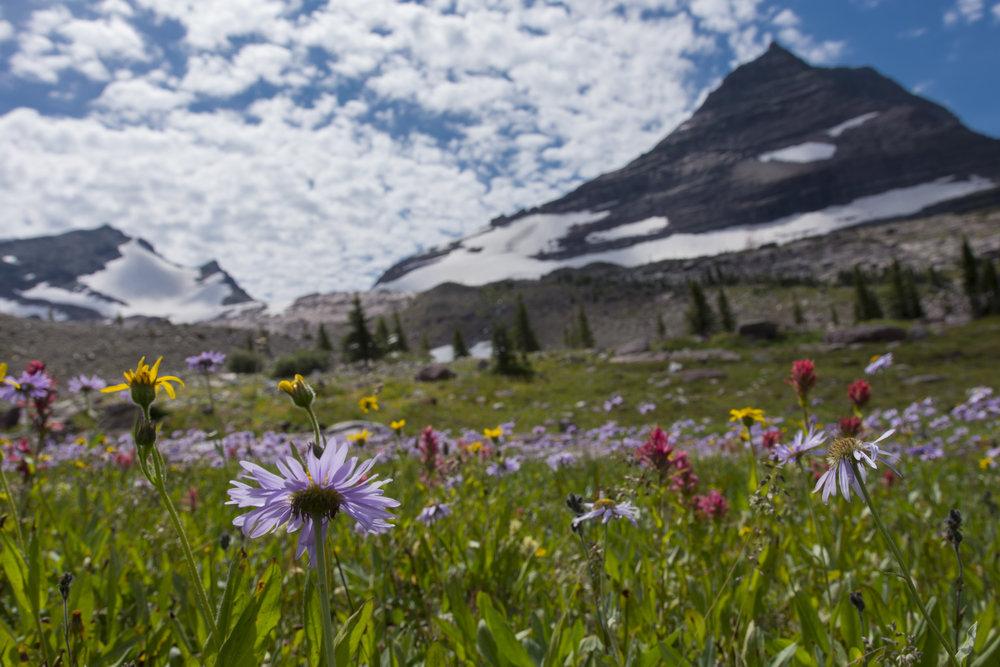 Sperry Glacier, Glacier National Park