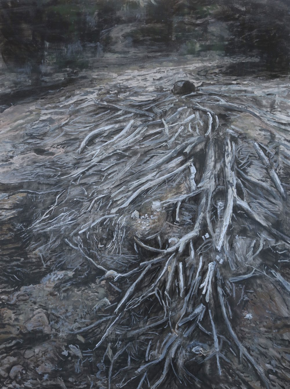 "The Killer Many Paces Ahead (Chained Trees), 36""x48"", 2012, $900"