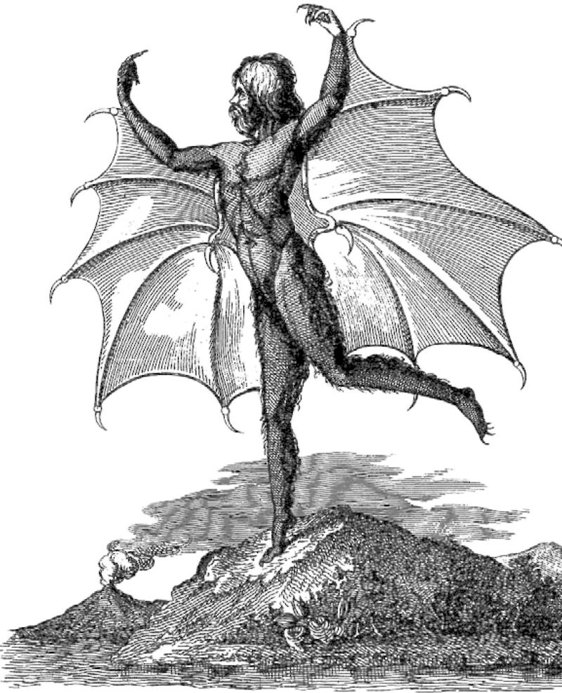 "Portrait of a man-bat (""Vespertilio-homo""), from an edition of the Moon series published in Naples"