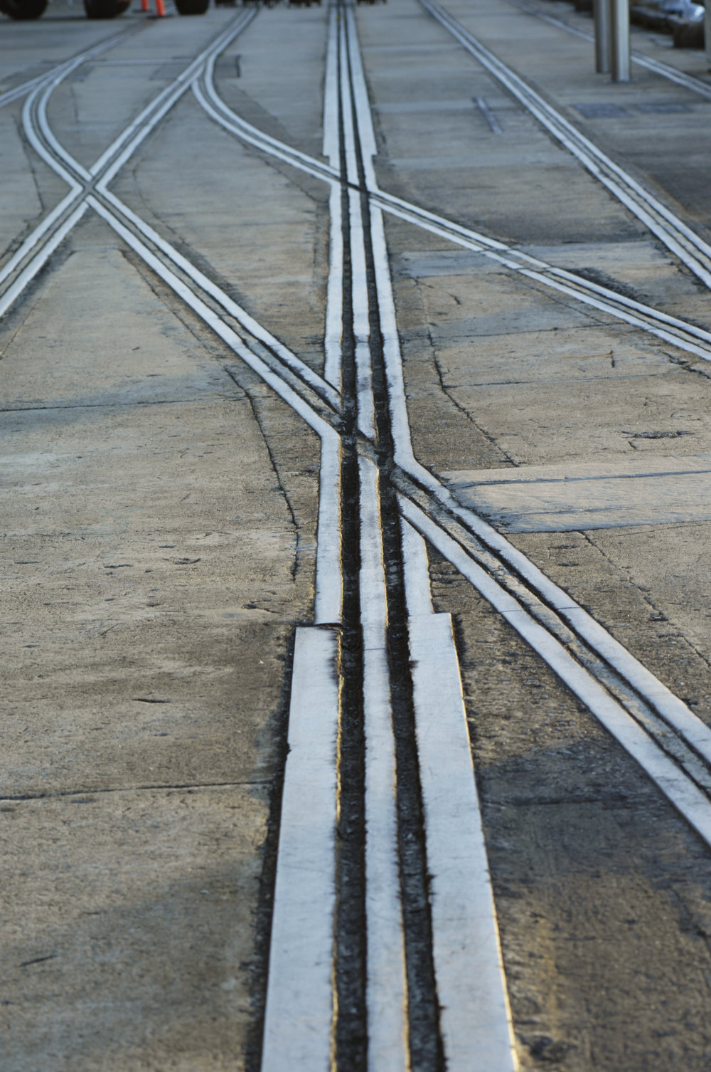 Tracks on Jones Bay whraf.JPG