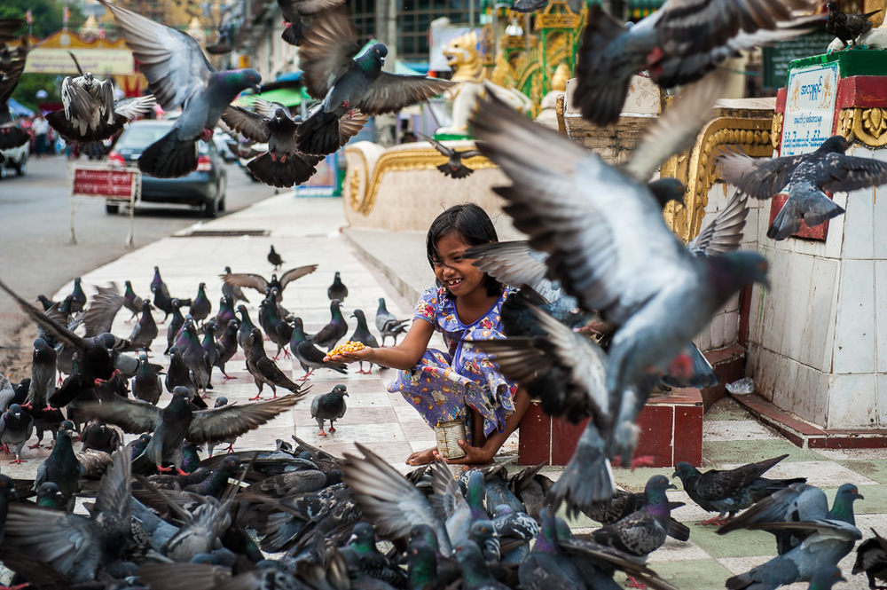 Girl feeding pidgeons outside a temple