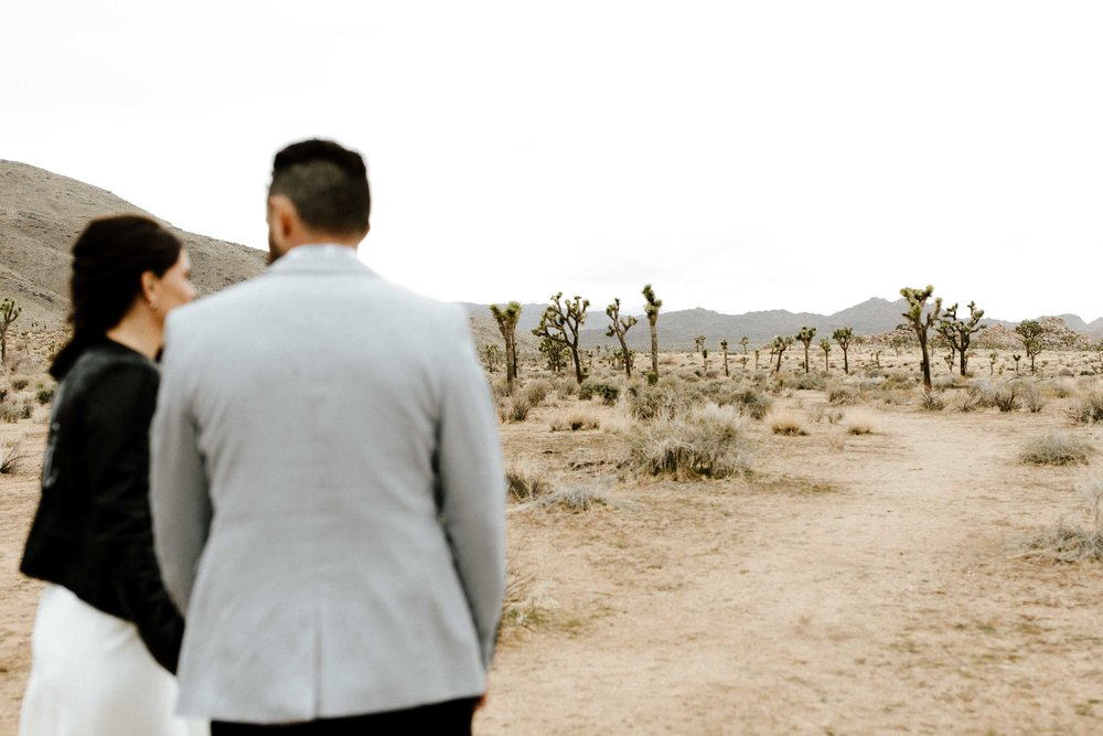 America Joshua Tree Palm Springs Elopement wedding-51.jpg