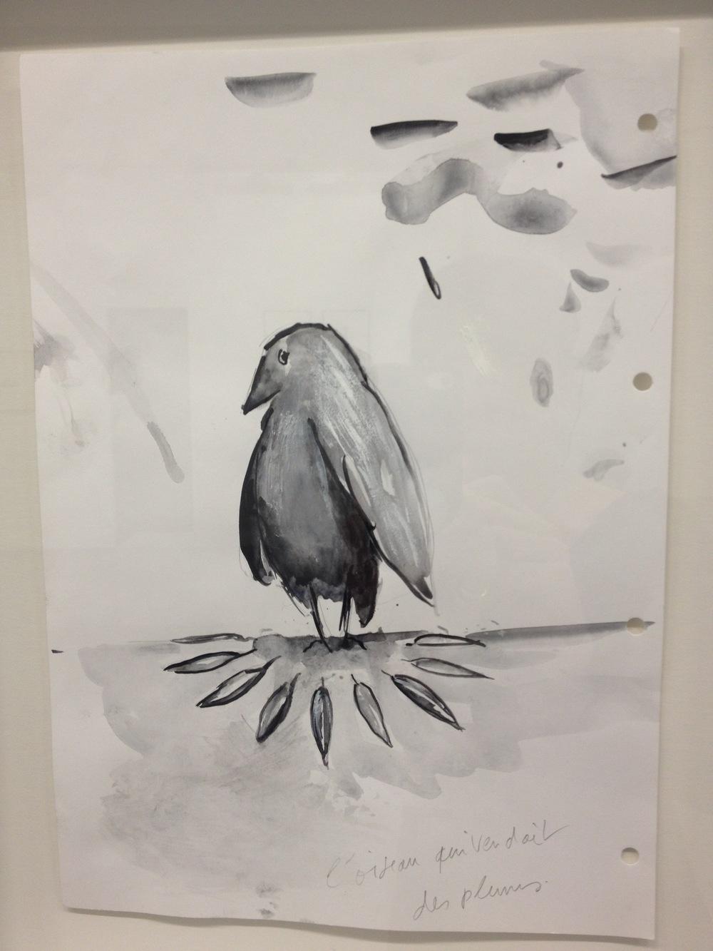 Dépité, l'oiseau...