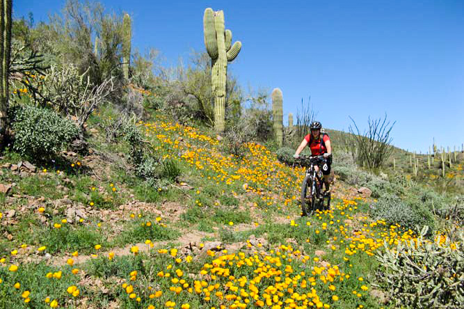 Black-Canyon-Trail-Little-Pan-Loop - 5 Mountain Biking Trails with Stunning Scenery in the USA - The Wayward Post.
