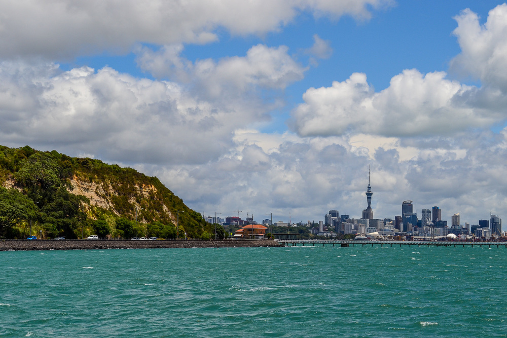 Auckland, New Zealand Cityscape. Photo by Julia Reynolds