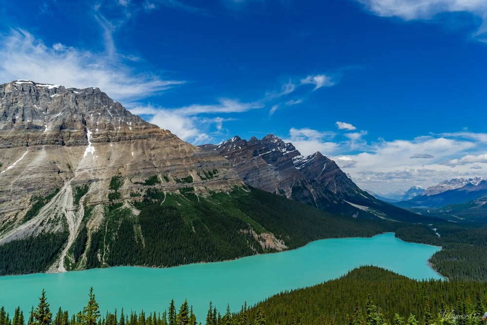 Lake Peyto - The Wayward Post - Photo Story - Jasper National Park, AB Canada.