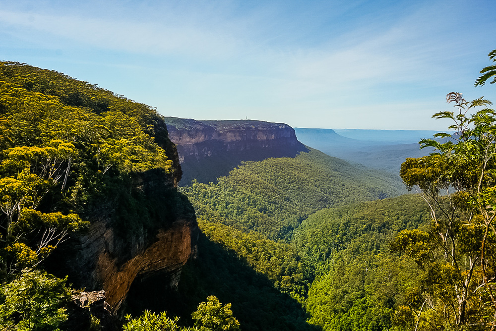 Tread Lightly Eco Tour, Blue Mountains. PHOTO BY LAURA FAIRBOURN.