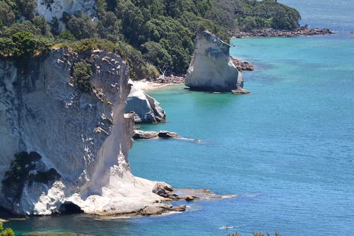 Cathedral Cove - 6 Socially Conscious Trip Ideas for New Zealand North Island (Part 1) - Photo by Julia Reynolds
