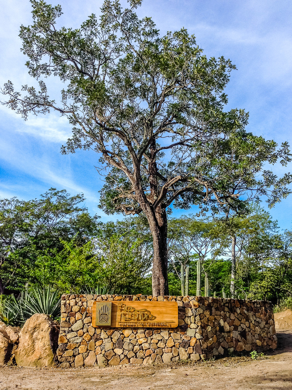 Sustainability on Stilts at Rio Perdido, Costa Rica-10.jpg