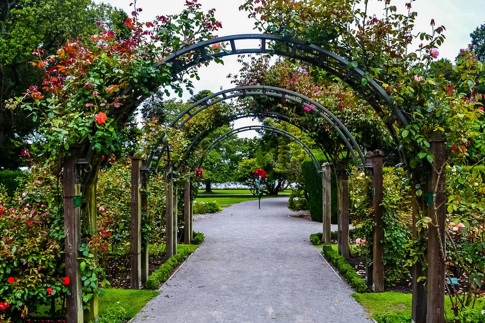 Christchurch Botanic Gardens (3), Christchurch New Zealand.jpg