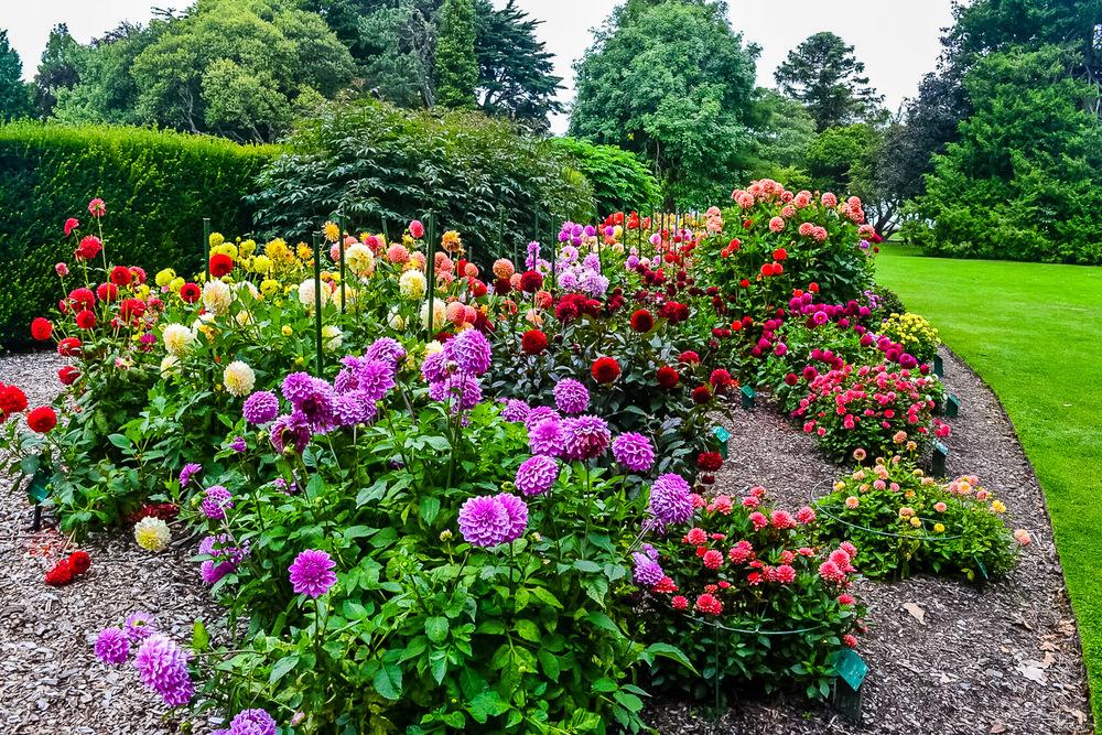 Christchurch Botanic Gardens (2), Christchurch New Zealand.jpg