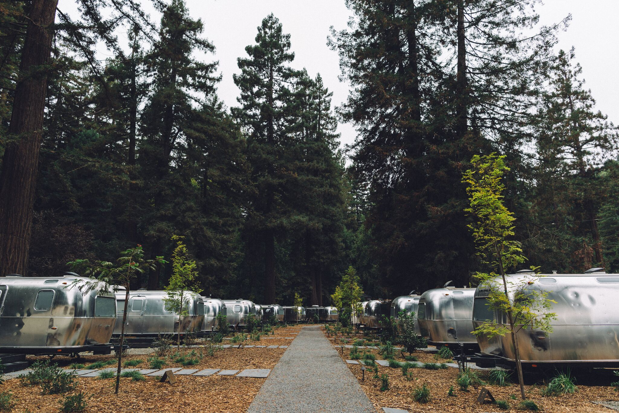 AutoCamp Russian River: The Future of Sustainable High-End Camping