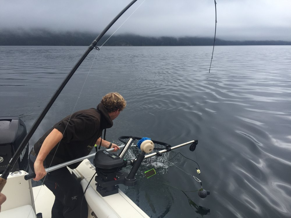 Salmon Fishing. Or rockfish fishing. - Source Claudia Laroye
