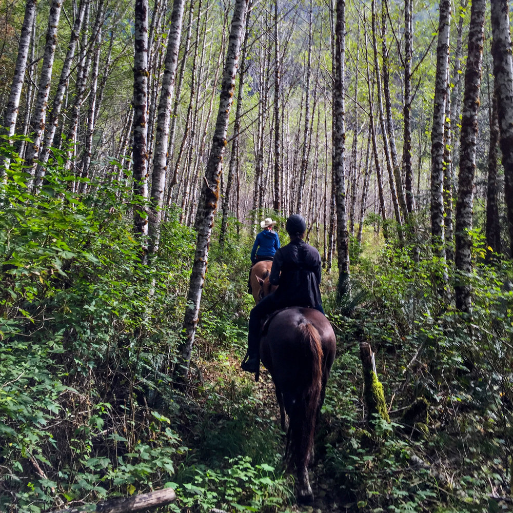 Horseback riding - Source Claudia Laroye