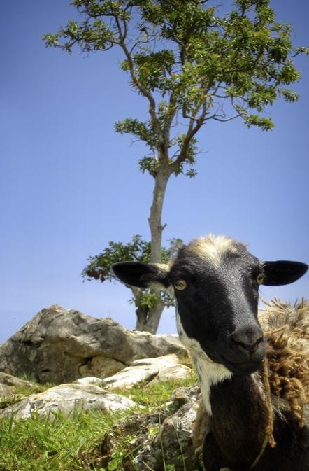 Haiti_2011_062.jpg