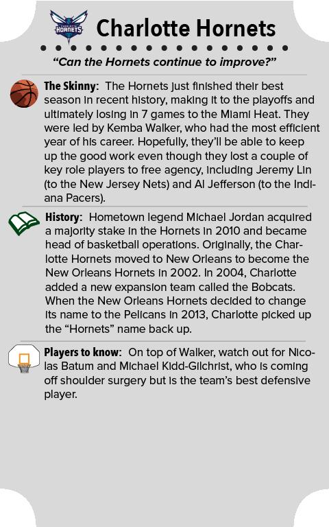 Charlotte Hornets Team Primer