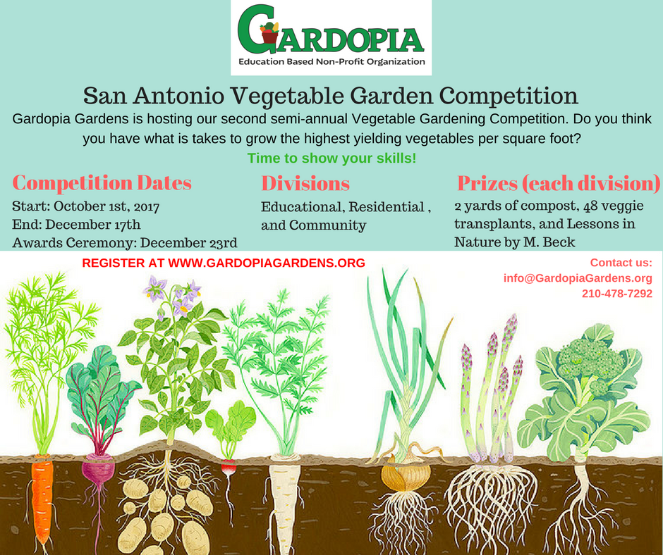 San Antonio Vegetable Garden Competition.png