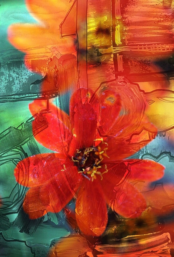 Fleurs d'Oranger - website.jpg