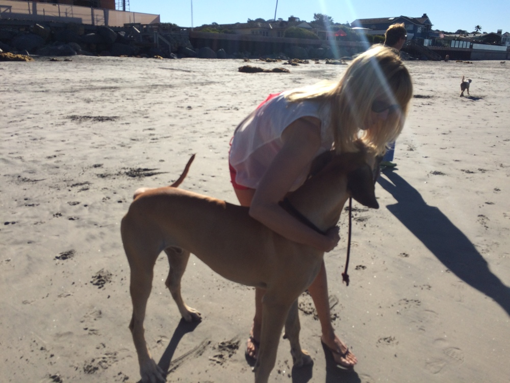 tricia big dog del mar bech.JPG