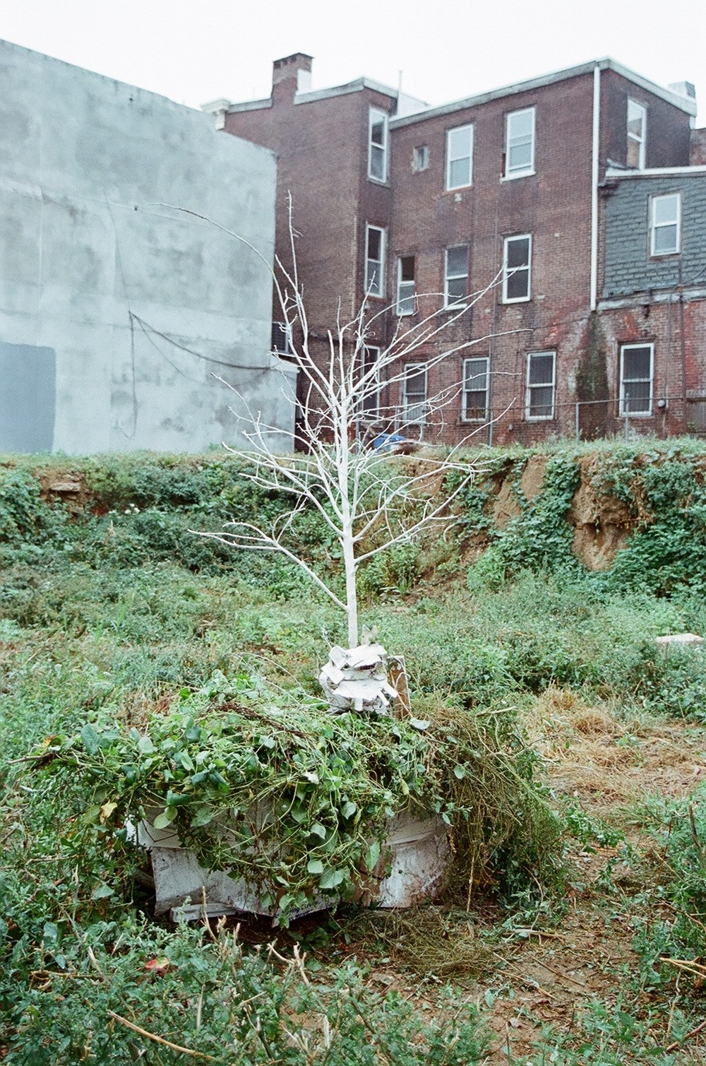 Experiments On Vacant Land (2012), Public Arts Initiative, Philadelphia