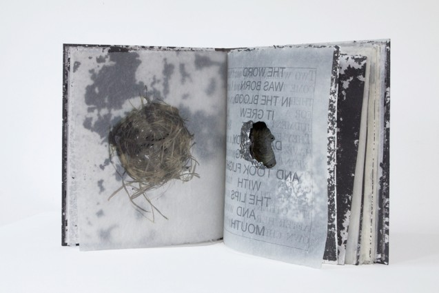 "Solomon's Wisdom: A Fable, A Poem, A Eulogy, A Dream, 10 nests and 8 holes, 2011, archival inkjet printing on Dobbin Mill papers, stainless steel staples, 13"" x 12"", edition of 15"