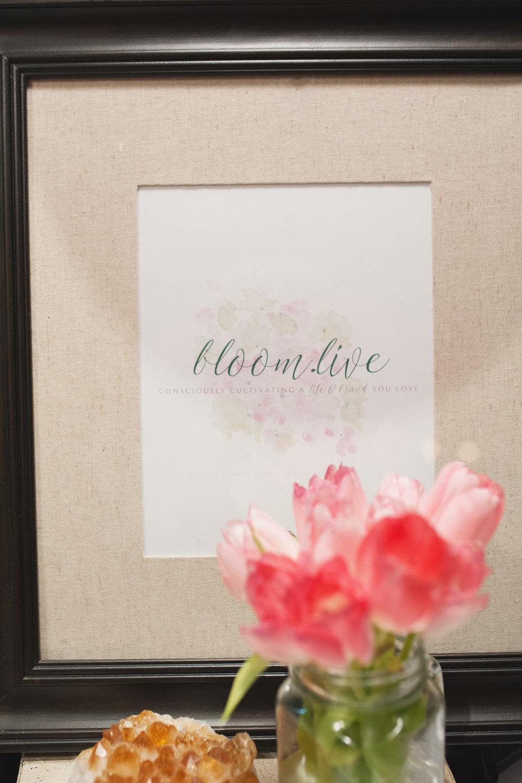 BloomLive_022.jpg