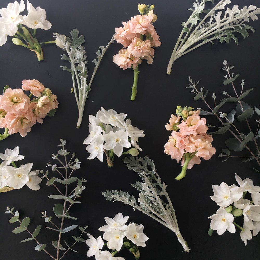 Bits and pieces from the farm this week - paperwhite narcissus, apricot stock, dusty miller and eucalytus.