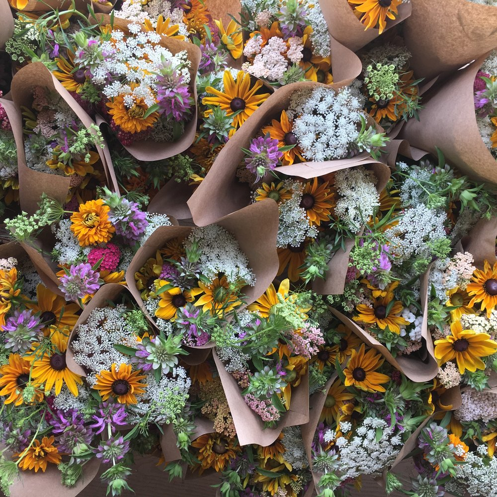 Color Fields Seasonal Organic Flower Subscription Share