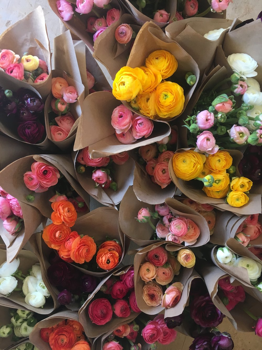 Color Fields Organic Ranunculus Weddings Flower Subscription Share