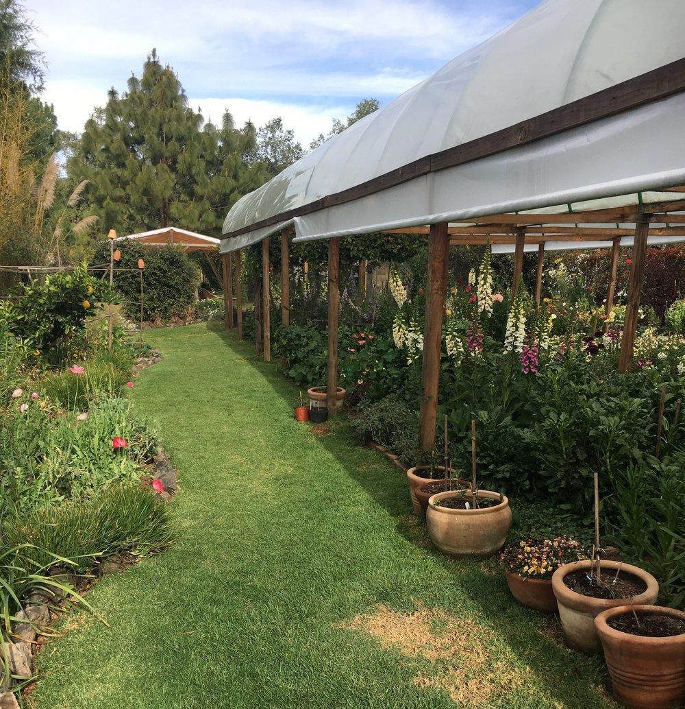 The gardens in Valle de Bravo.