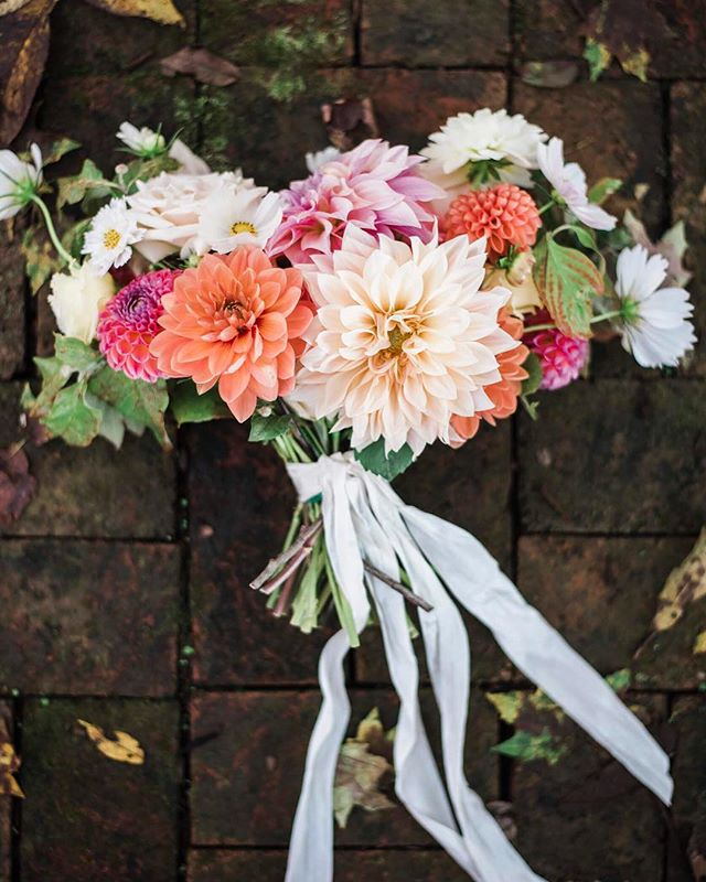 Dahlia plating is right around the corner! Farm grown bouquet for a lovely fall bride from last year. Photo: @jolindsay