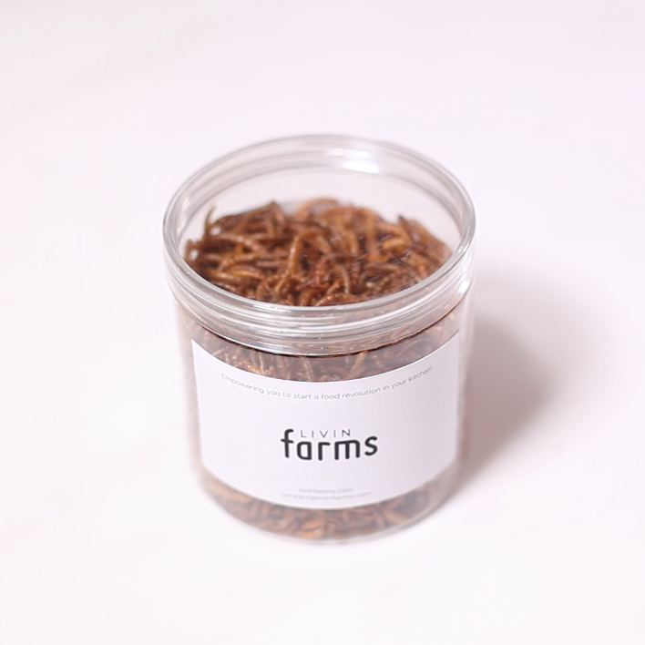 farmed-mealworms-edible-insects