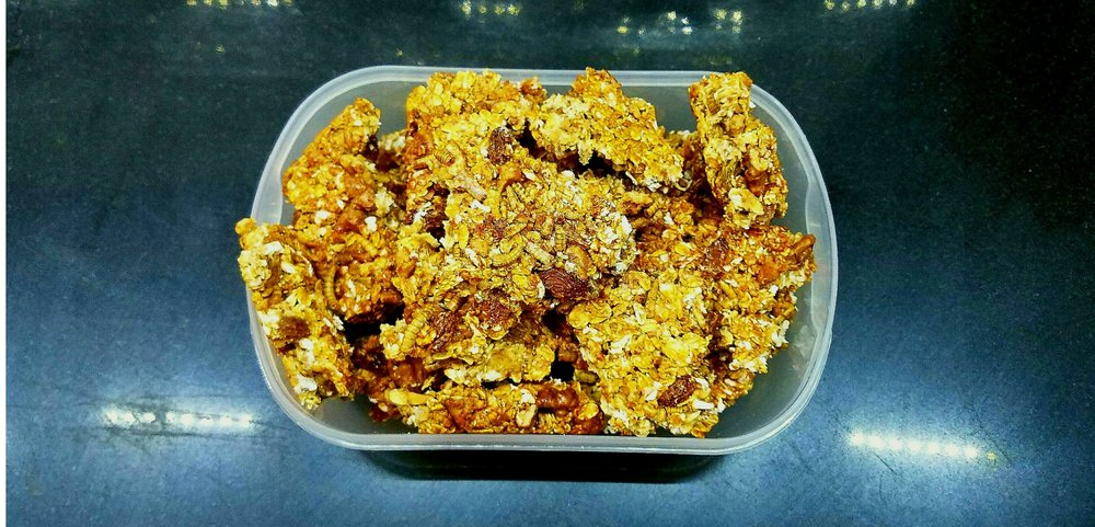 Insect protein bar mealworms granola.jpg